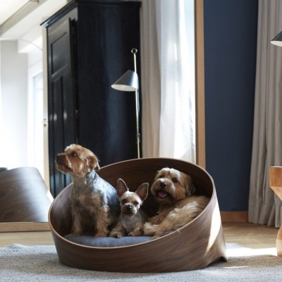 3 dogs sitting in a luxury dog bed