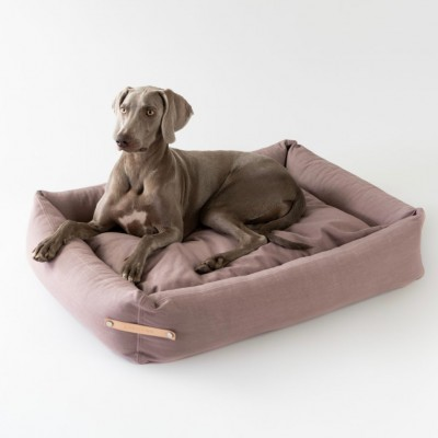 A dog lying on a bed